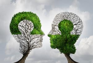 partner trees